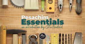 Pesachim Essentials