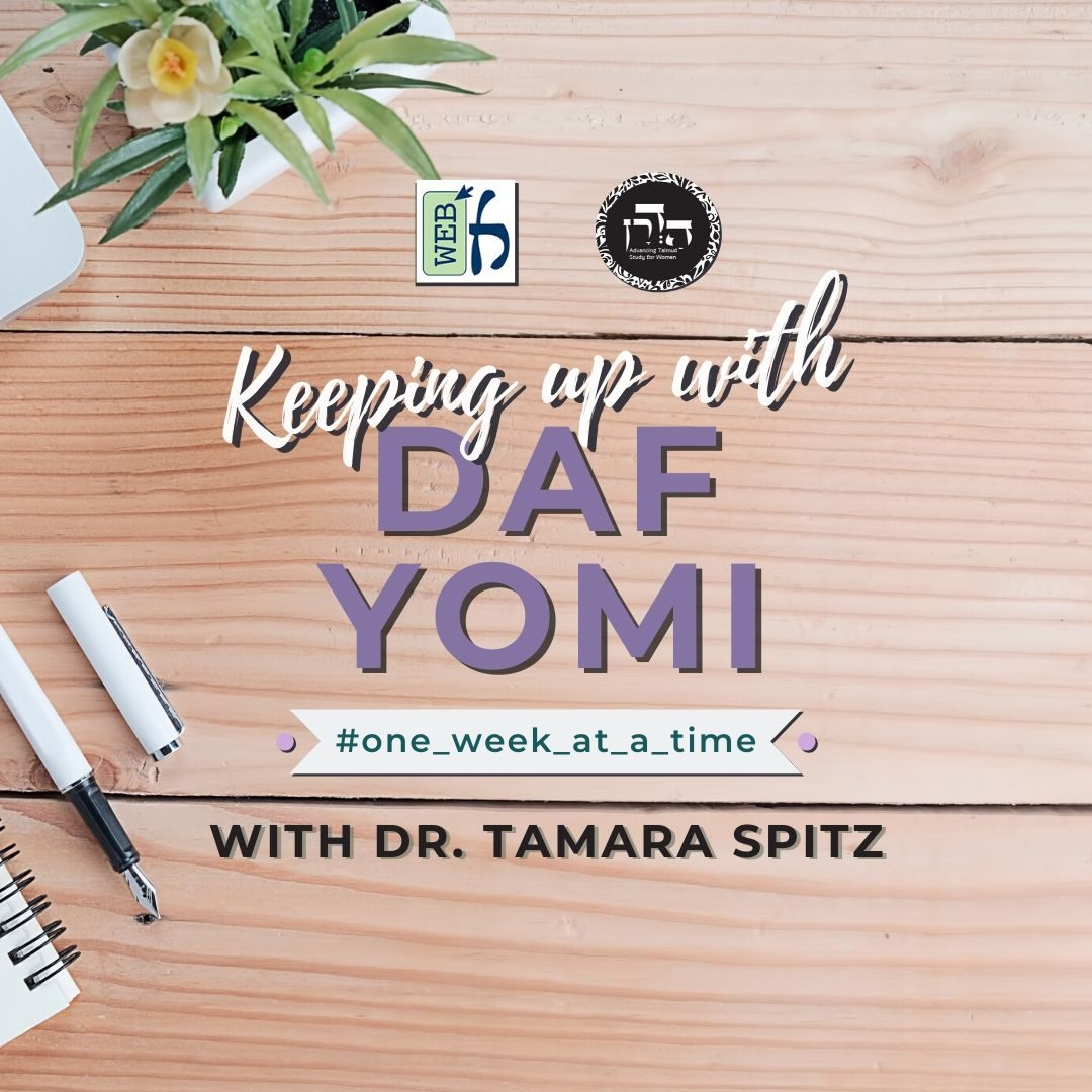 learn daf yomi one week at a time with tamara spitz