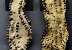 sandal nails